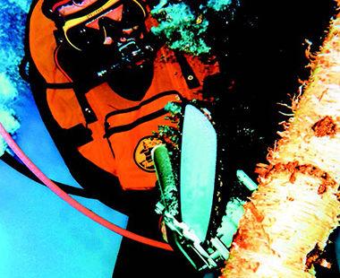Model 5 1030 xxxx Underwater application