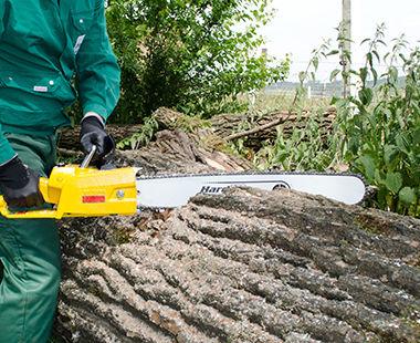 Model 5 1030 xxxx cutting wood