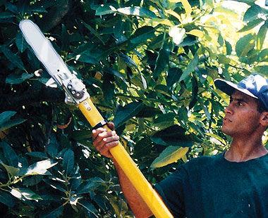 Sierra de poste hidráulica con mango no conductor